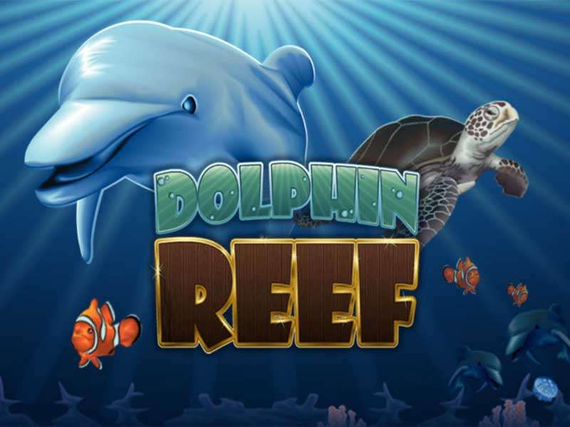 3 Tips to know about Dolphin Reef slot game