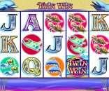 Twin Win Slots