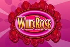 Wild Rose Slot